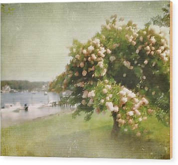 Monet's Tree Wood Print
