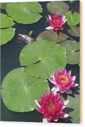 Monet's Waterlilies IIi Wood Print by Marguerita Tan