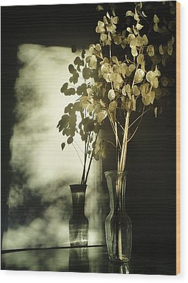 Money Plants Really Do Cast Shadows Wood Print by Guy Ricketts