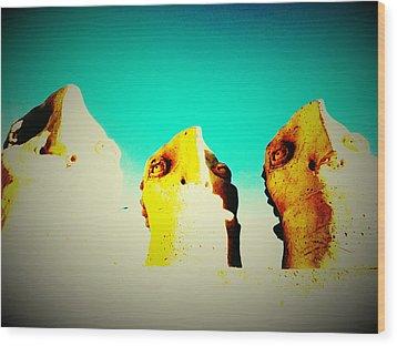 Monitors - Blue Sky Wood Print by Mark M  Mellon