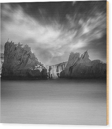 Monochrome Days Wood Print by Taylan Apukovska