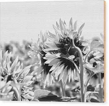 Monochrome Summer Wood Print by Georgia Fowler