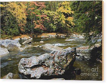 Monongahela National Forest Cranberry River Wood Print by Thomas R Fletcher