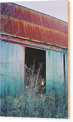 Monroe Co. Michigan Barn Wood Print by Daniel Thompson
