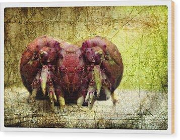 Monster Mash Wood Print by Davina Washington
