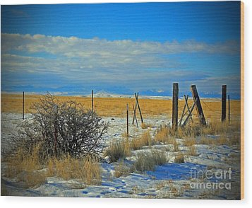 Montana Fencerow Wood Print by Desiree Paquette