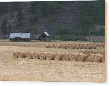 Wood Print featuring the photograph Montana Hay Harvest by Vinnie Oakes