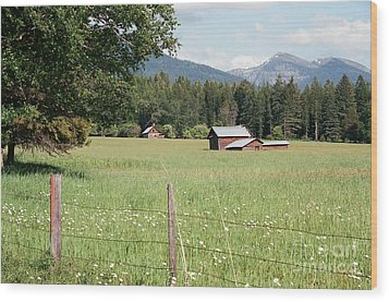 Montana Homestead Wood Print by Vinnie Oakes