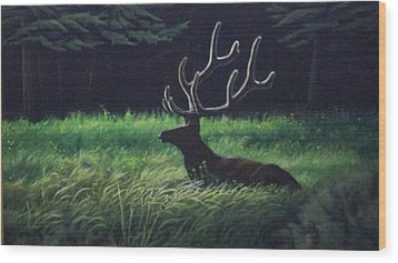Montana Morning Wood Print by Dan Parsons