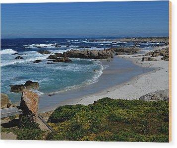 Monterey-1 Wood Print by Dean Ferreira