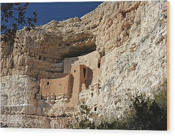 Wood Print featuring the photograph Montezuma Castle by Penny Meyers