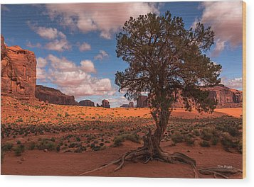 Monument Valley Morning Wood Print by Tim Bryan
