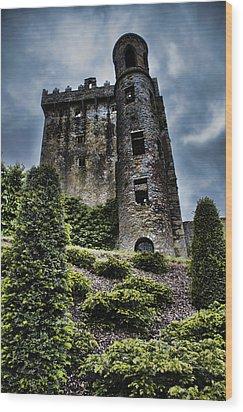 Moody Castle Wood Print