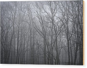 Moody Outlook Wood Print by Mary Zeman