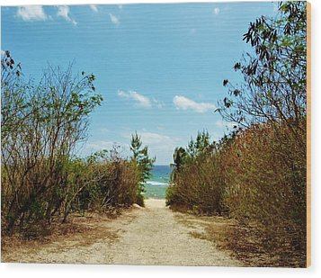 Wood Print featuring the photograph Moon Bay Walk by Amar Sheow