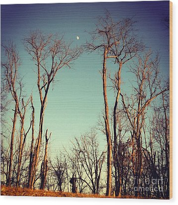 Wood Print featuring the photograph Moon Between The Trees by Kerri Farley