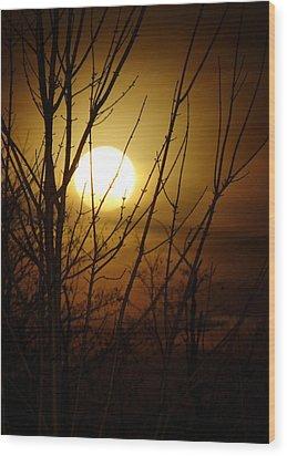 Moon I Wood Print
