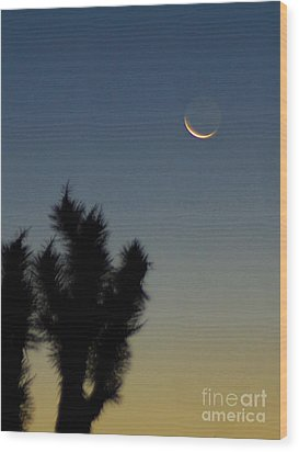 Wood Print featuring the photograph Moon Kissed by Angela J Wright