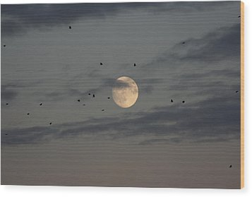 Wood Print featuring the photograph Moon Lighting The Way by Paula Brown