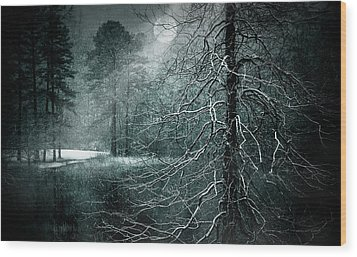 Moon Misty Lake  Wood Print by Dorothy Walker