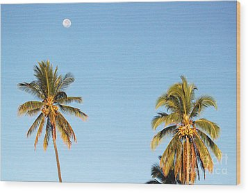 Moon Over Molokai Wood Print by Terry Holliday
