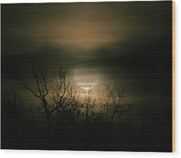 Moon Over Prince George Wood Print by Karen Harrison