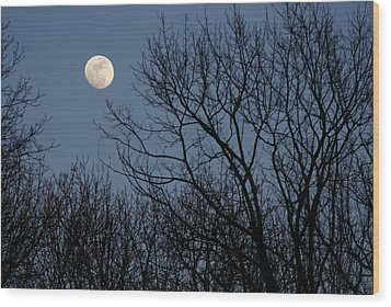 Moon Over Trees Wood Print