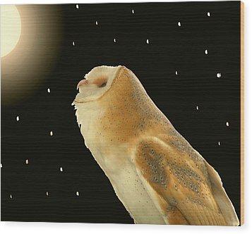 Moon Owl Wood Print by Peg Urban