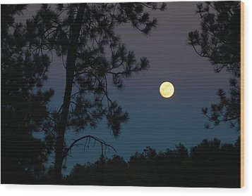 Moon Rise In Twilight Wood Print