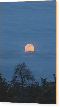 Moon Rising Wood Print