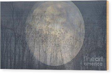 Moon Shadow Wood Print by France Laliberte
