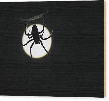 Wood Print featuring the photograph Moonlight Hunter by Christopher McKenzie