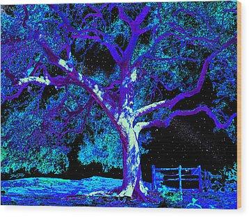 Moonlight Oak Wood Print by Dan Terry