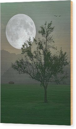 Moonlight On The Plains Wood Print by Tom York Images