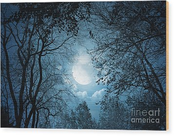 Moonlight With Forest Wood Print by Boon Mee