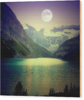 Moonlit Encounter Wood Print by Karen Wiles