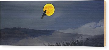 Moonlit Freedom Of Flight Wood Print