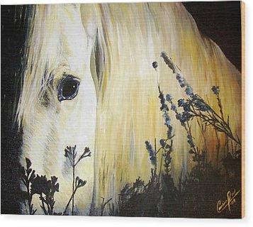 Moonlit Horse Wood Print by Caroline  Reid