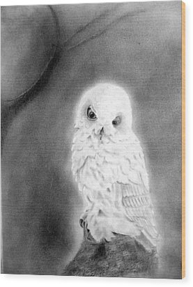 Moonlit Snowy Owl Wood Print
