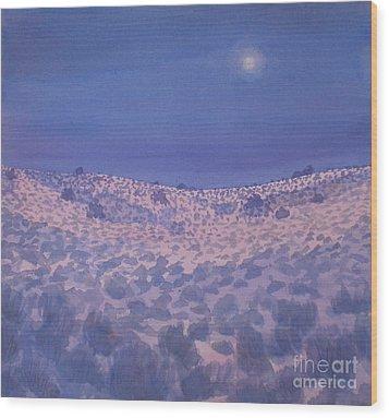 Moonlit Winter Desert Wood Print