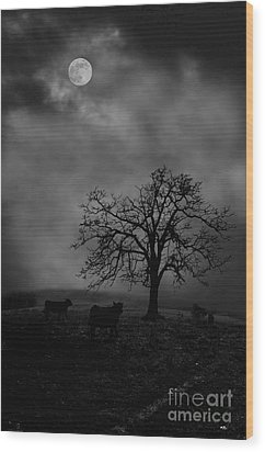 Moonlite Tree On The Farm Wood Print by Dan Friend