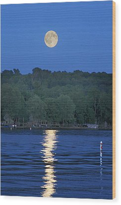 Reflections Of Luna Wood Print by Richard Engelbrecht