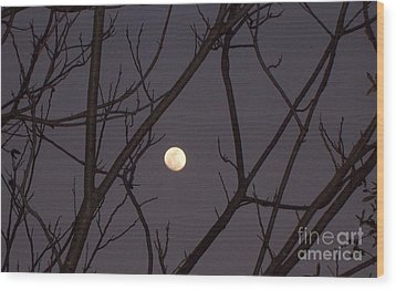 Moonrise Wood Print