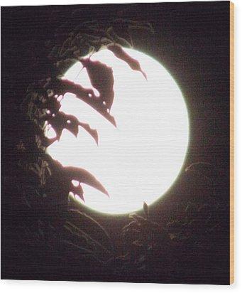 Moonshine 11 Evsion Pt2 Wood Print