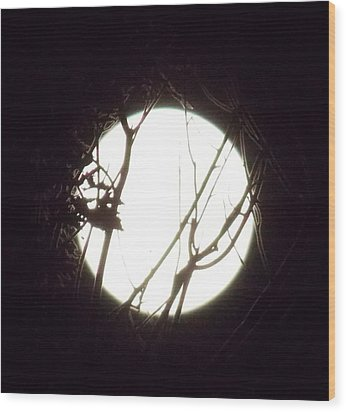 Moonshine 3 Wood Print