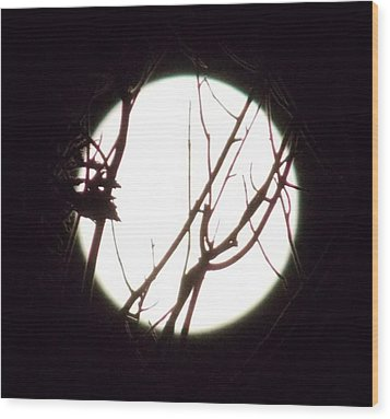 Moonshine 4 Wood Print