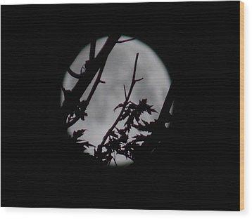 Moonshine 6 Wood Print