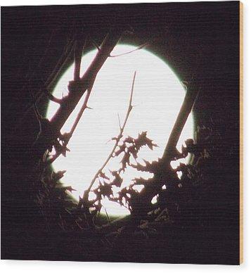 Moonshine 7 Wood Print