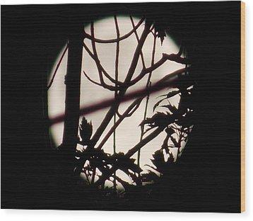 Moonshine 8 Wood Print
