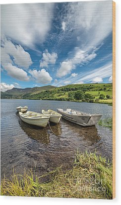 Moored Boats  Wood Print by Adrian Evans
